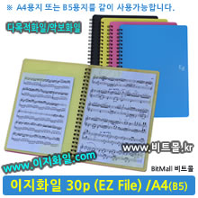 이지화일 30 (Ez File 30p / A4/B5겸용)